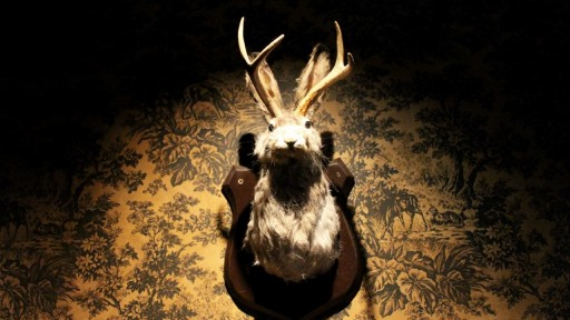 Bar Jackalope Photo (via 213dthospitality)