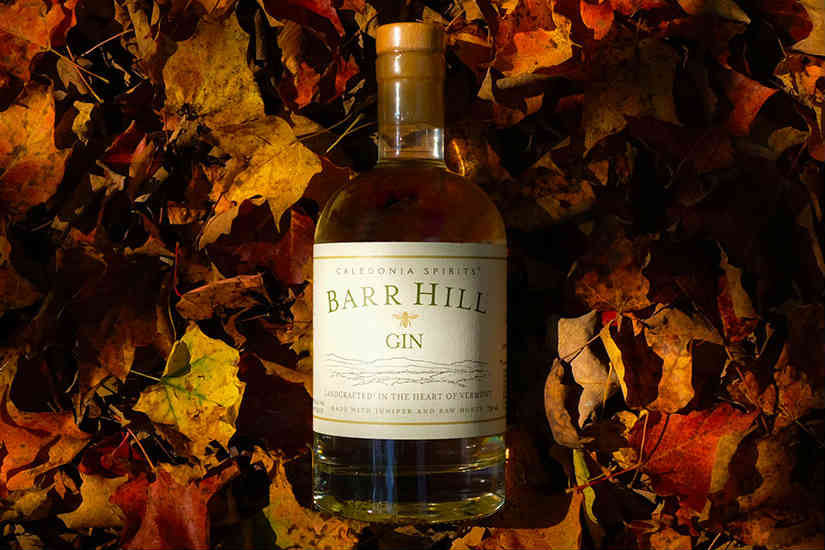 Barr Hill Gin Review
