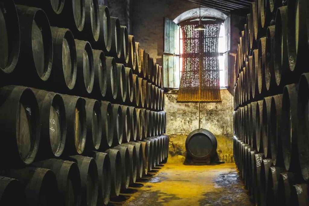 row of cardenal mendoza brandy barrels
